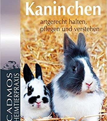 Kaninchen artgerecht halten, pflegen und verstehen